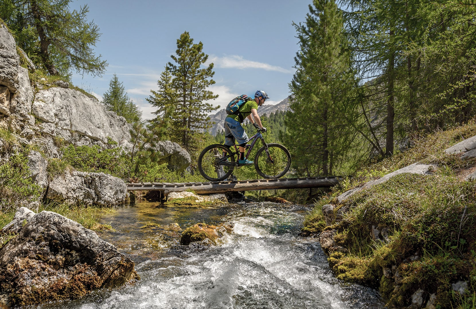Alpine Mountain Biker